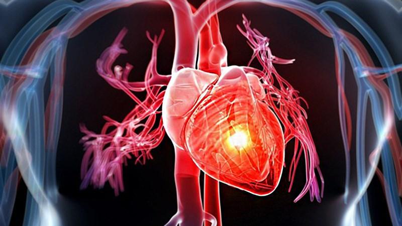 Giảm nguy cơ mắc bệnh tim mạch và tiểu đường