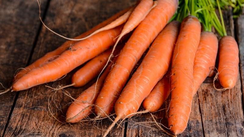Nguồn gốc và đặc điểm của cà rốt