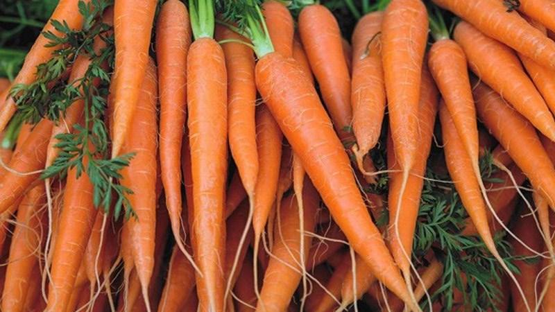 Thành phần dinh dưỡng của cà rốt