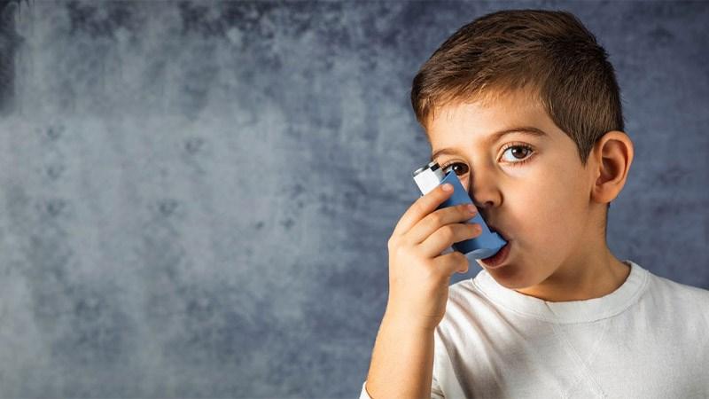 Hạt kệ giúp giảm các triệu chứng hen suyễn