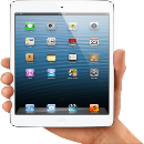 Ipad mini wifi 16gb