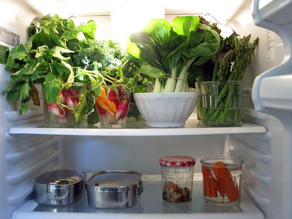 Tủ lạnh không đủ lạnh có thể gây ảnh hưởng đến thực phẩm cất trữ trong đó