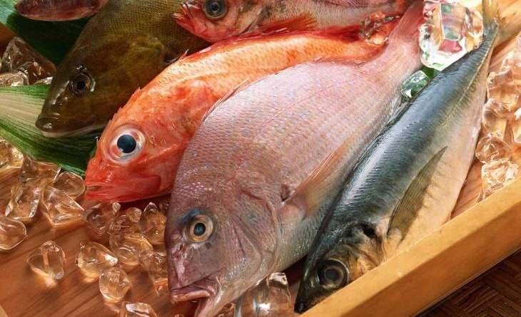 Cá có mùi tanh nên cần chú ý làm sạch trước khi cho đông đá
