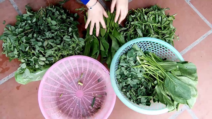Loại bỏ những phần rau củ bị sâu