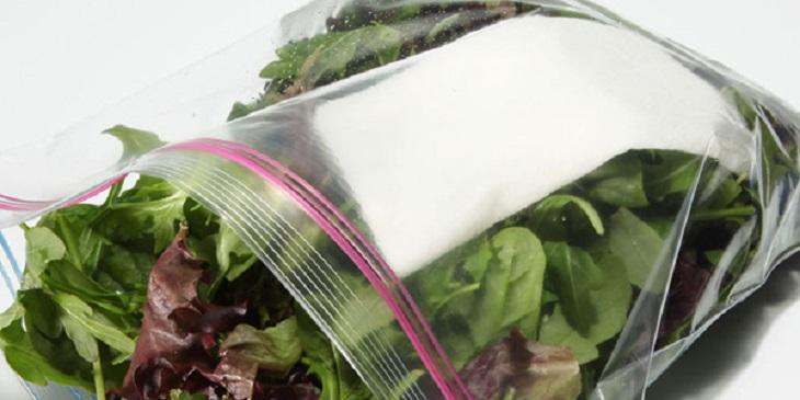 bảo quản rau tươi trong túi nilong cho vào ngăn mát tủ lạnh