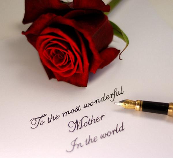 Hoa hồng thay lời muốn nói