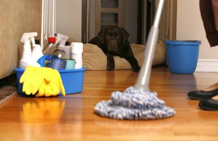 Lau nhà thường xuyên để tránh bụi bám lâu ngày