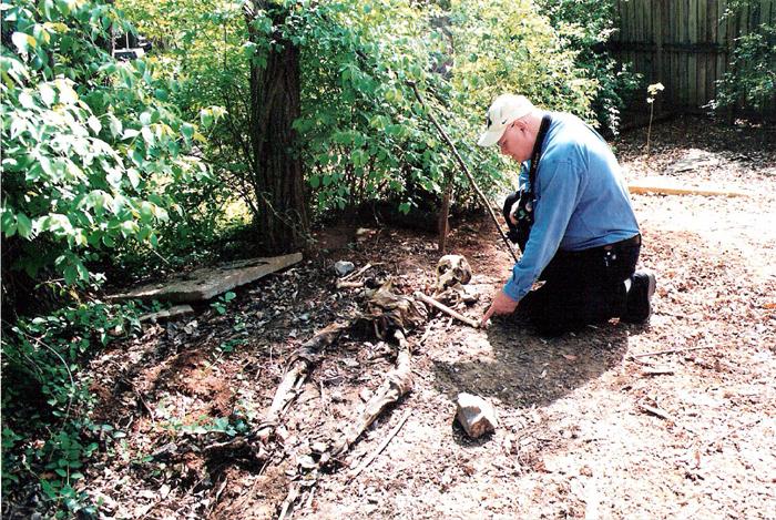 Ngày nay đã có hơn 5 cánh đồng xác chết tại Mỹ