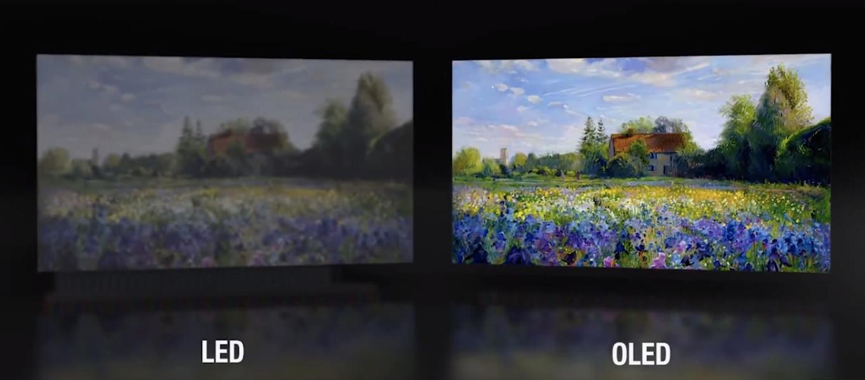 Tivi OLED vượt trội Tivi LED về màu sắc