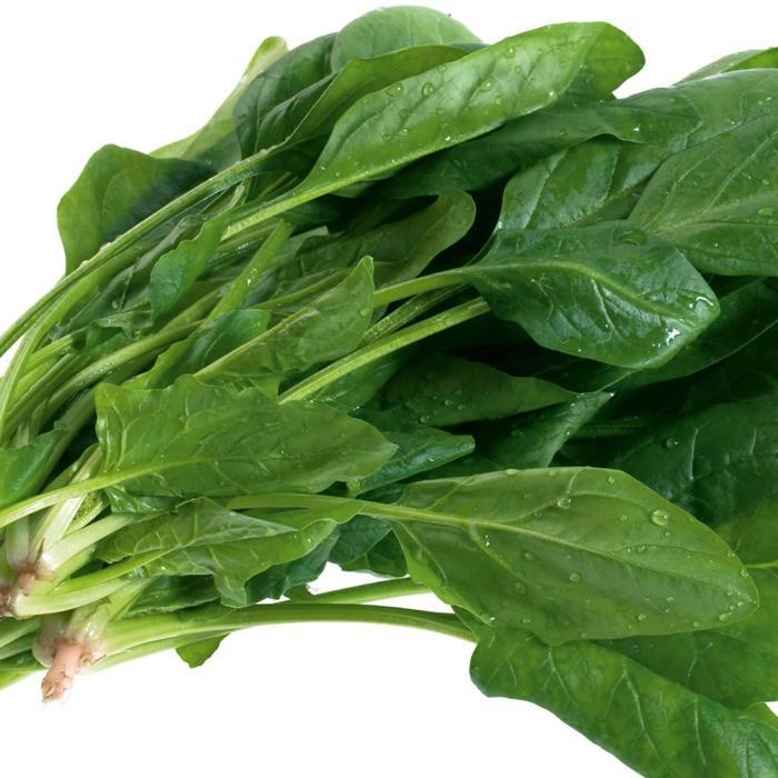 Cải bó xôi chứa nhiều vitamin cần thiết cho cơ thể
