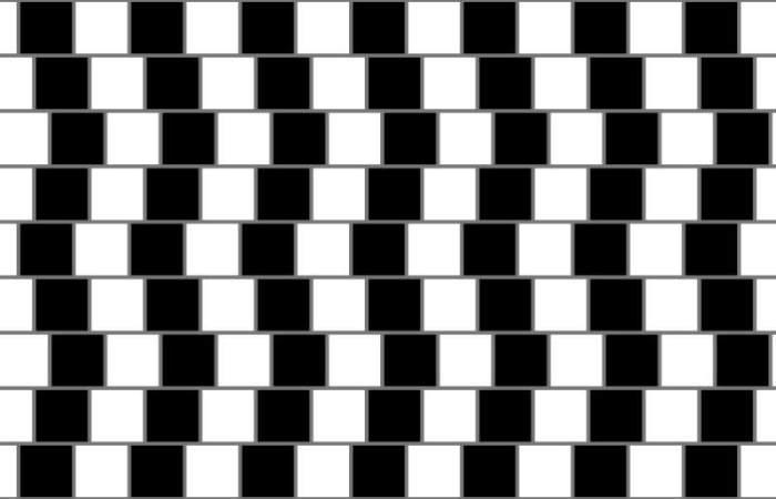 Các đường thẳng song song với nhau