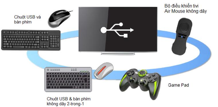 Kết nối chuột, bàn phím