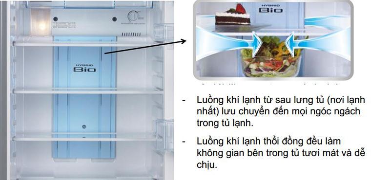 Công nghệ luồng khí lạnh vòng cung trên tủ lạnh Toshiba