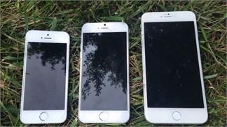 10 mẫu iPhone đã được Apple cho ra mắt, bạn đoán sản phẩm nào dẫn đầu Top?