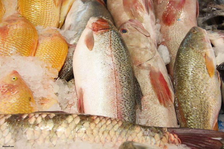 Rã đông thịt cá vừa tốn thời gian vừa mất chất