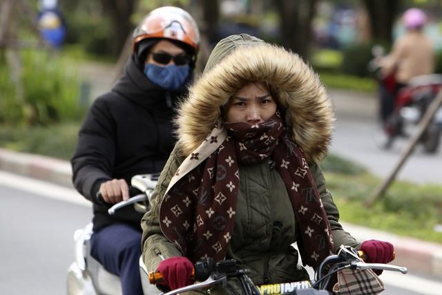 Khu vực sống thuộc miền Bắc và những nơi có khí hậu lạnh