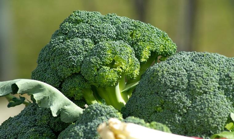 Ăn rau màu xanh sẫm