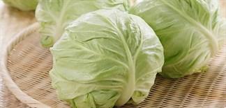 Cách chọn mua và bảo quản bắp cải