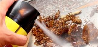 Một số lưu ý khi dùng thuốc diệt côn trùng