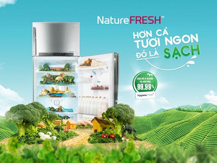 Những điều bạn nên biết về công nghệ Nature Fresh +™ có trên tủ lạnh LG