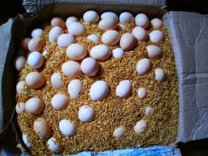 Bảo quản trứng bằng trấu hoặc bã chè khô