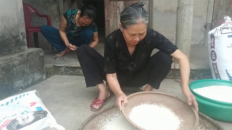 Cách xử lý khi gạo bị mọt
