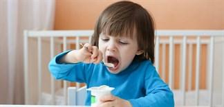 Chế biến các loại sữa chua trái cây thơm ngon cho bé