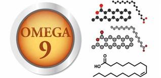 Omega 9 (axit oleic) là gì? Tác dụng và nguồn thực phẩm cung cấp Omega 9