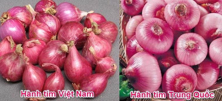 Cách phân biệt hành khô Trung Quốc với Việt Nam