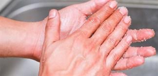 Khử mùi tanh hải sản trên tay bằng các loại gia vị có trong bếp