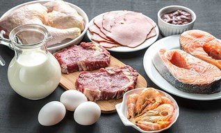 Protein là gì? Vai trò của Protein và Protein có nhiều trong thực phẩm nào?