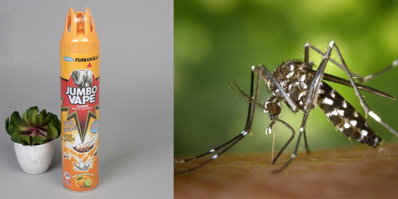 Phun thuốc xịt muỗi thì bao lâu mới được vào nhà?