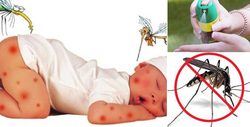 Bé dưới 2 tháng tuổi không dùng bất kỳ loại thuốc chống muỗi nào cho bé