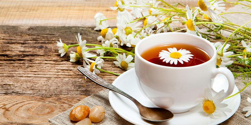 Những lưu ý khi dùng trà hoa cúc