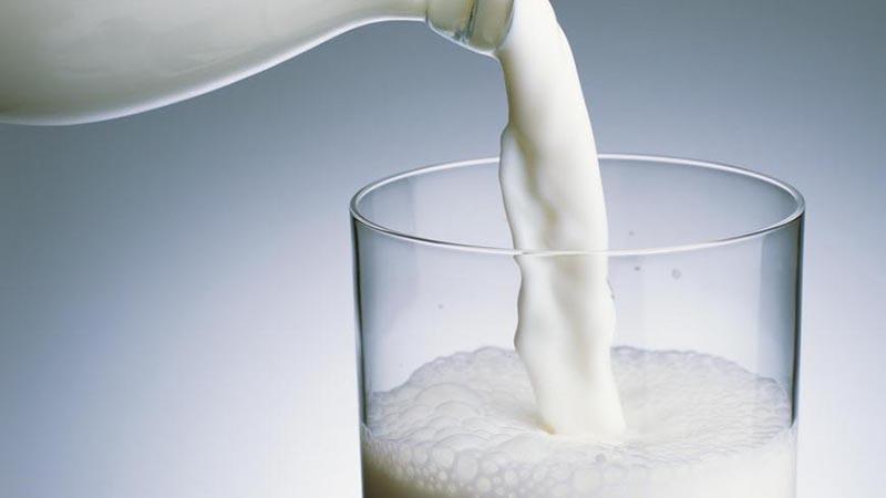 Sữa bò giàu canxi, vitamin D, B1, B2, protein và nhiều chất dinh dưỡng khác