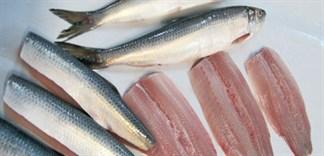 Mẹo làm phi lê cá ngon trộn gỏi cá trích tuyệt hảo