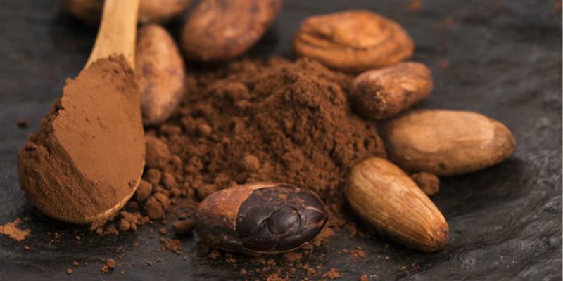 Cacao giàu về năng lượng và dinh dưỡng