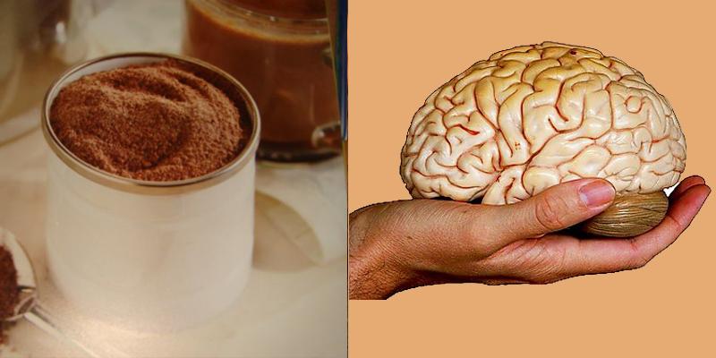 Khoáng chất trong cacao có lợi cho não bộ trẻ nhỏ