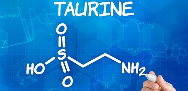 Taurine là gì? Vai trò và nguồn thực phẩm bổ sung taurine cho cơ thể