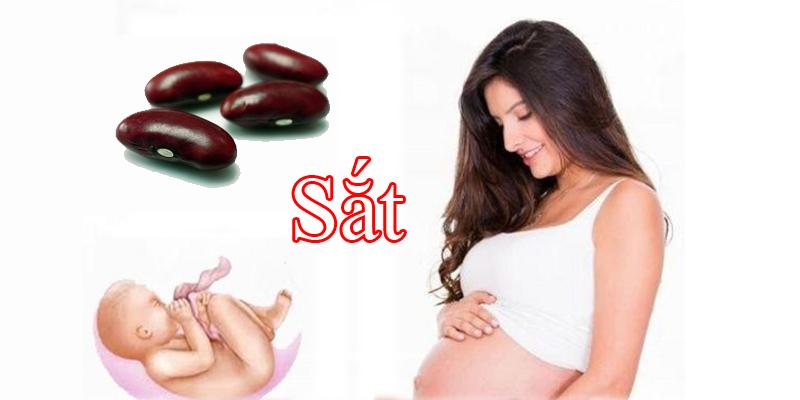 Đậu đỏ là nguồn cung cấp sắt dồi dào có lợi cho mẹ bầu và thai nhi
