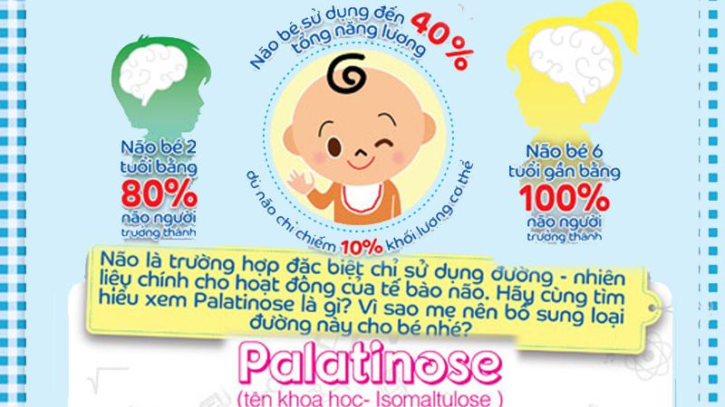 Đường Isomaltulose hay Palatinose là gì?-2