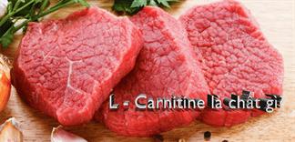 L – Carnitine là chất gì?