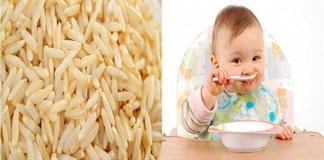 Có nên cho trẻ ăn gạo mầm?