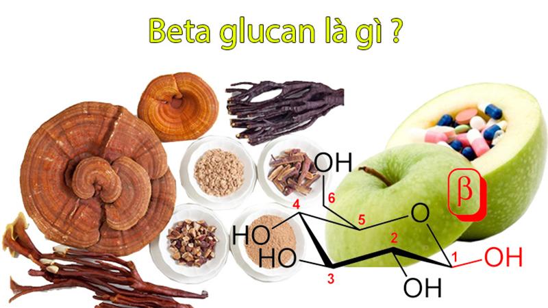 Beta Glucan là 1 chuỗi của các phân tử glucose