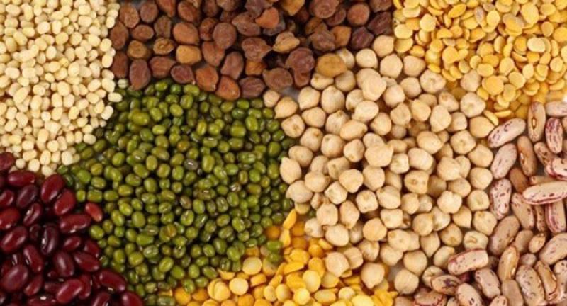 Các loại hạt và đậu