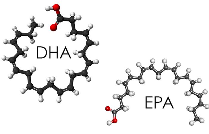 EPA là gì