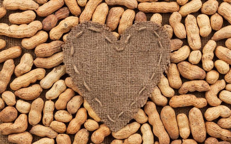 Tác dụng của đậu phộng đối với sức khoẻ