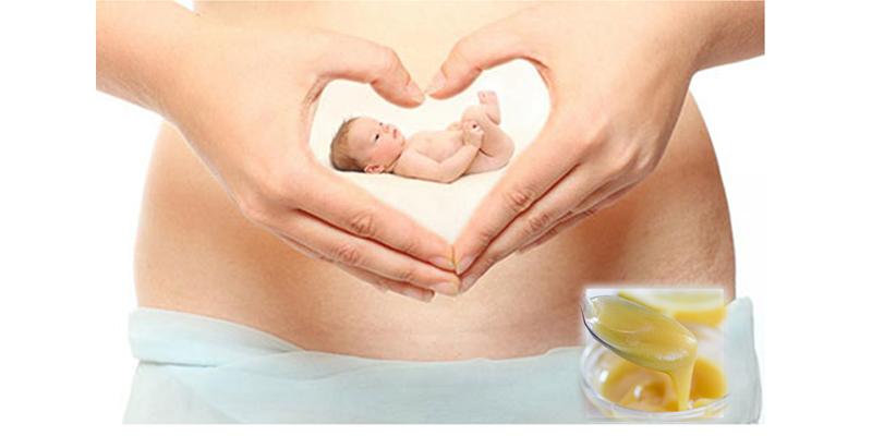 Sữa ong chúa có lợi cho mẹ bầu và sự phát triển của thai nhi
