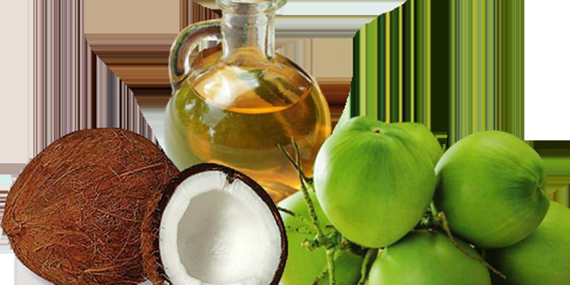 Giá trị dinh dưỡng của dầu dừa