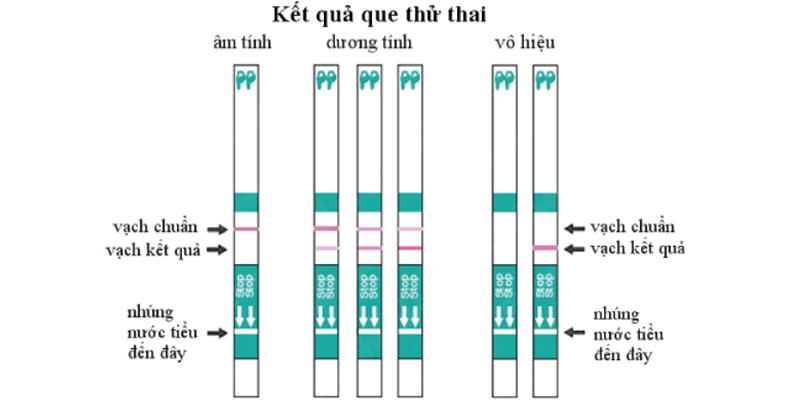 Cách dùng que thử thai cho kết quả chuẩn xác-2
